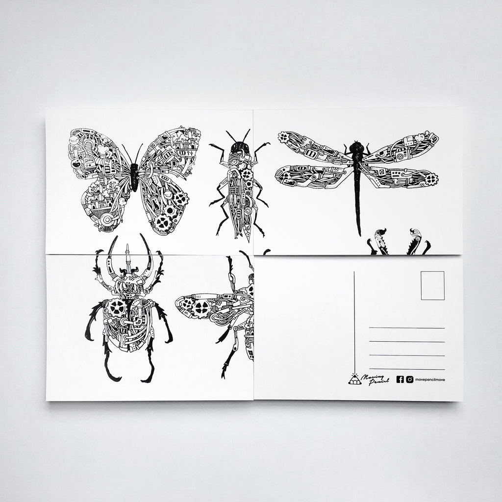 Postcard - Insects