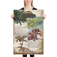 Load image into Gallery viewer, Hydra Diversity