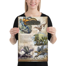 Load image into Gallery viewer, Faerie Dragon Diversity