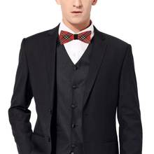 Load image into Gallery viewer, NILO Satin Bow Tie
