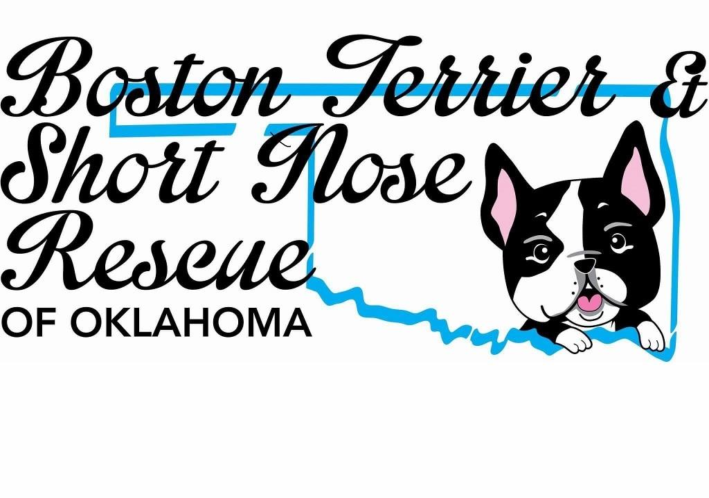 Boston Terrier & Short Nose Rescue of Oklahoma