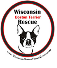 Wisconsin Boston Terrier Rescue