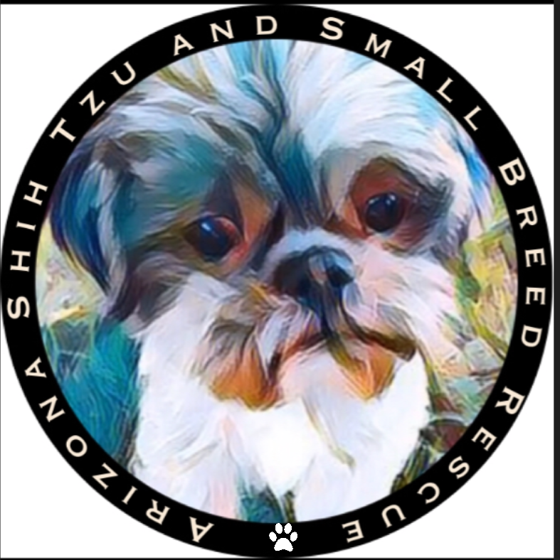 Arizona Shih Tzu and Small Breed Rescue