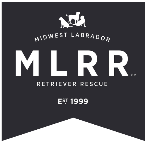 MidWest Labrador Retriever Rescue