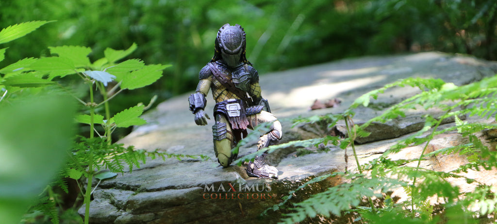 Maximus Collectors Predator Jungle Hunter Neca Monsterarts Figuarts Tamashii