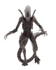 Alien Resurrection Xenomorph Warrior Figure by NECA - maximus collectors toys and gifts