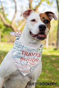 Travel dog bandana