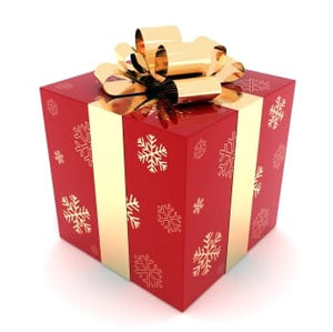 Merry Christmas ! A gift for you...