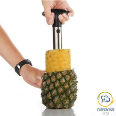 Pineapple cutter peeler washers