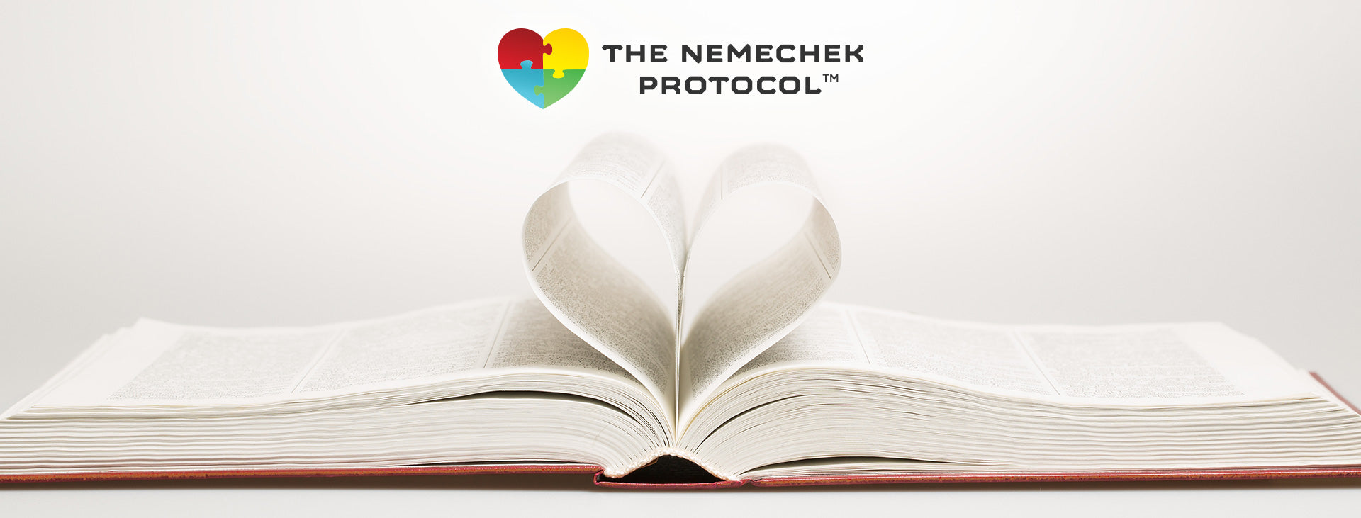 Nemechek Protocol Book Reviews