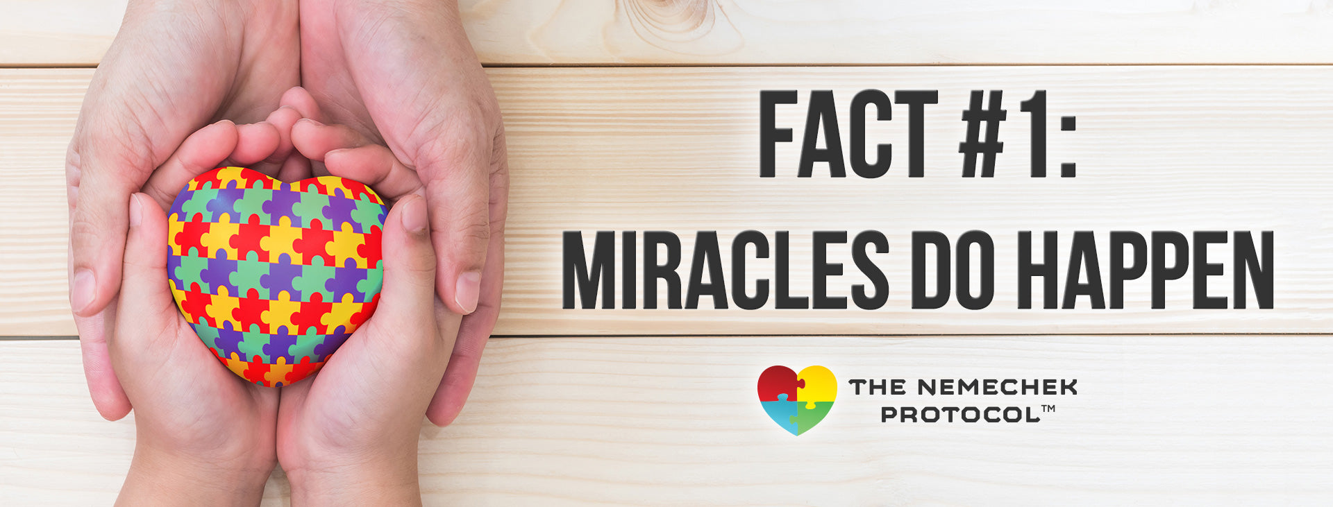 fact #1: miracles do happen - Nemechek Protocol