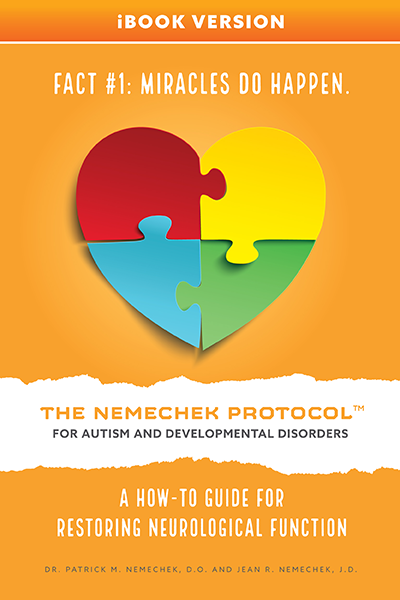 The Nemechek Protocol for Autism and Developmental Disorders - iBook Version