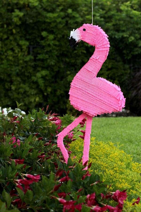 flamingo party piñata