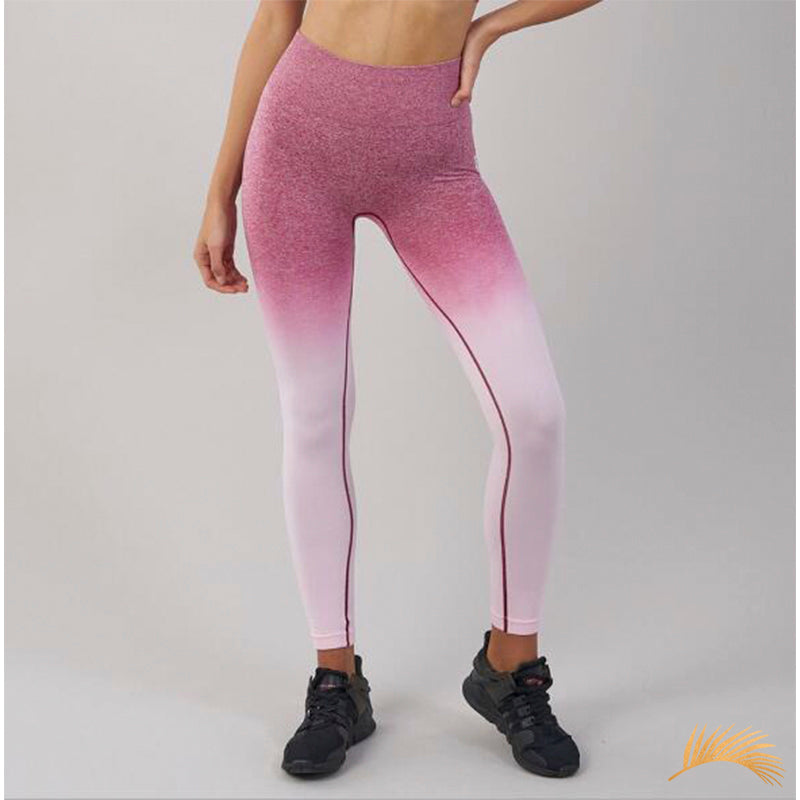 GRACE | Ombre Racer Back Sport And Legging | 4 Colors
