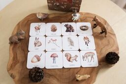 Memory Card Game - Woodland