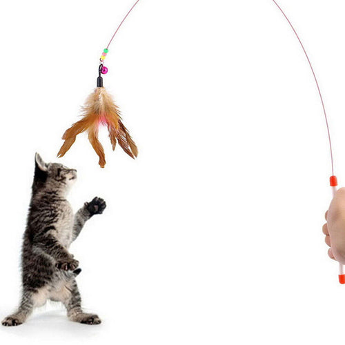 Creative Random Colored Feathers on Wire Rods with Flying Bell ~  A Favorite Toy of Cats & Kittens - BOUTIQUE CHIC