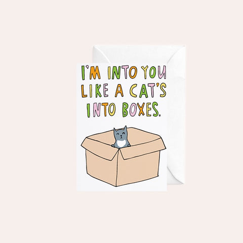 Able and Game Card - I'm Into You Like A Cat's Into Boxes