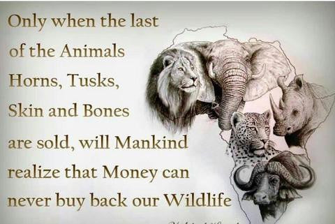 Terrorists Profit from Poaching Wildlife