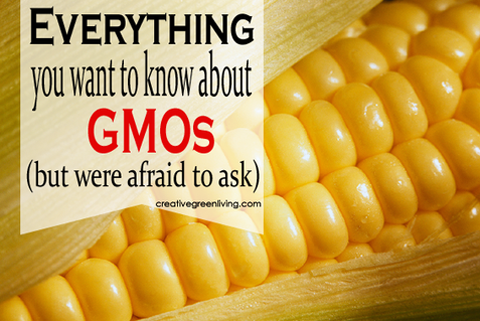GMO's: A Matter of Health or Trust??