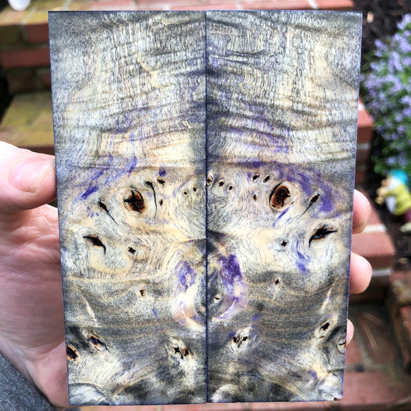 Black and Purple dyed Buckeye Burl Knife Scales