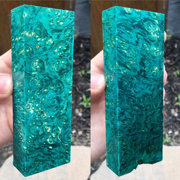 Teal Dyed Box Elder Burl Blank