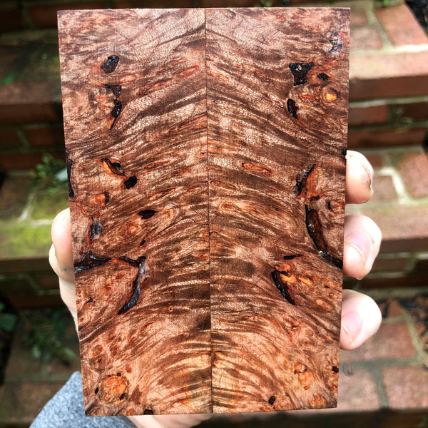 Blackened Maple Burl knife scales