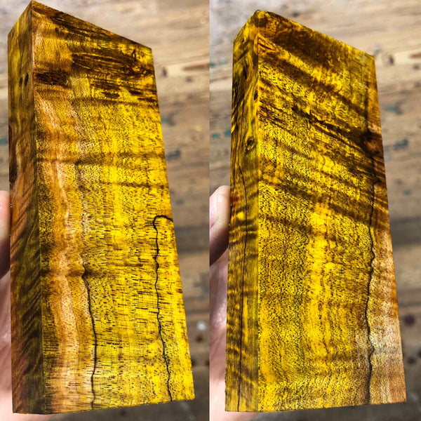 Gold Dyed Curly Spalted Maple Burl Blank