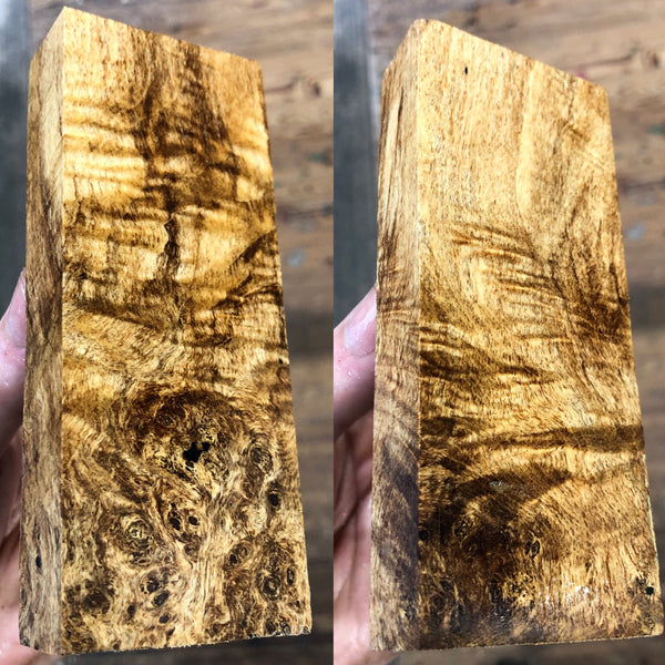 Spalted Maple Burl Blank