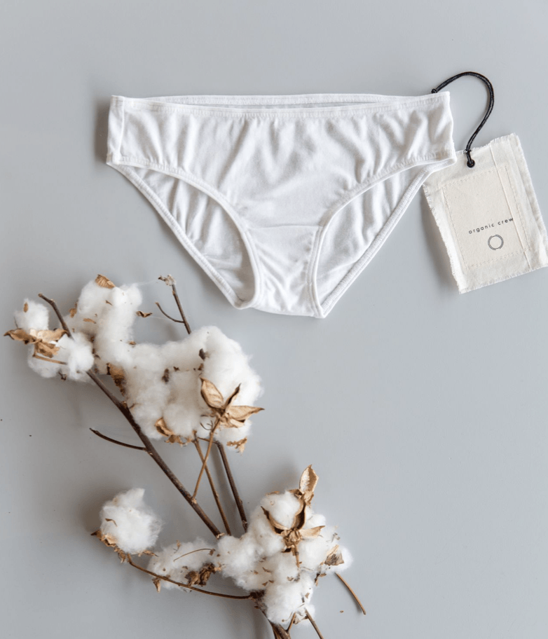 coco hipster brief- single pair in white brief Organic Crew