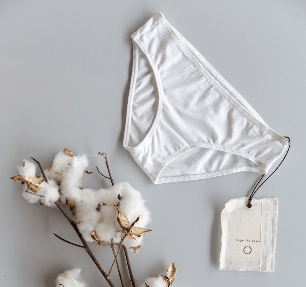 Load image into Gallery viewer, coco hipster brief- single pair in white brief Organic Crew