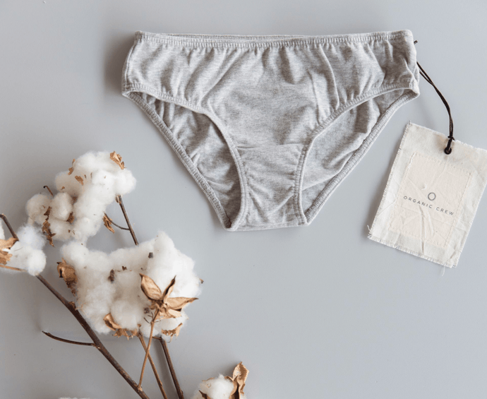 coco hipster brief- single pair in grey brief Organic Crew
