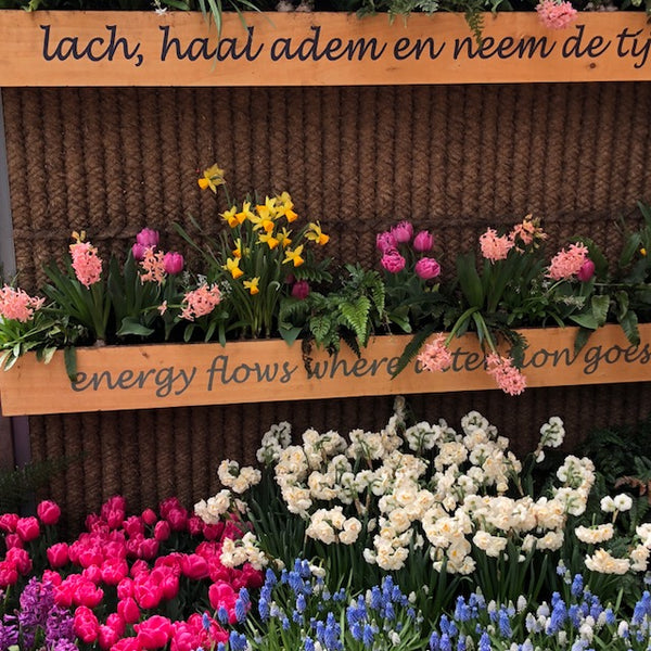 Antiquing in Holland- Side Trip to Keukenhof Gardens