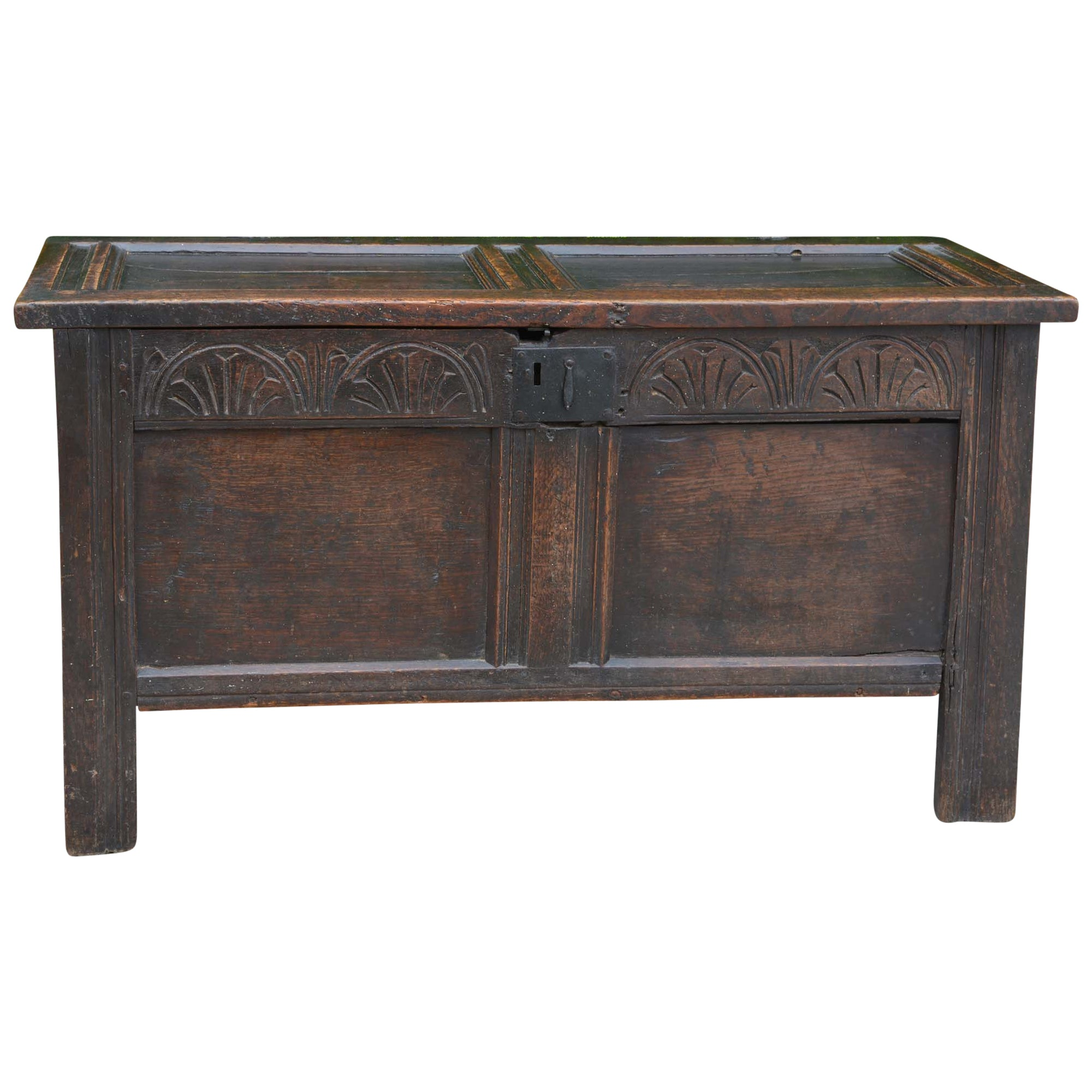 Antique English Carved Oak Two-Panel Blanket Chest Main