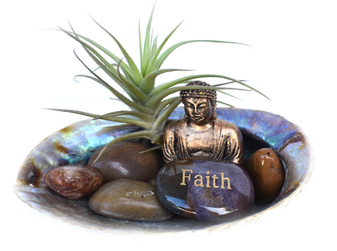 Zen Desk Terrarium - Faith - Pranachic