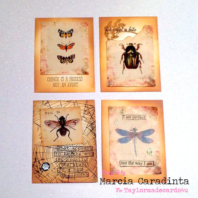 Bug Notecards