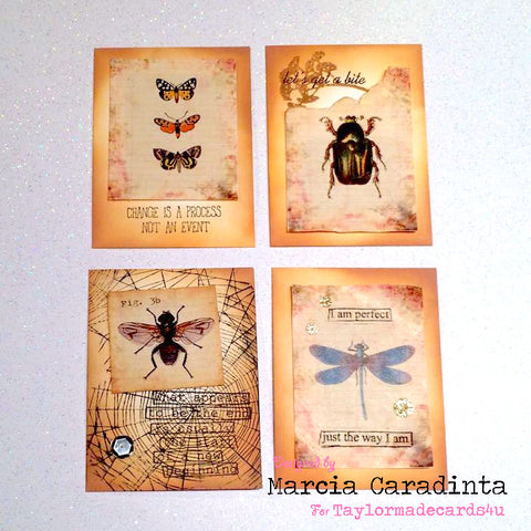#thefrolickingfairy #taylormadecards4u #bugatccards #atcs #bugs #entomology #vintage #ephemera #dylusions #spidersweb #notecards #papercraft #handmade