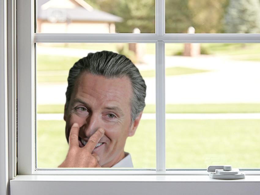 Gavin Newsom Window Cling
