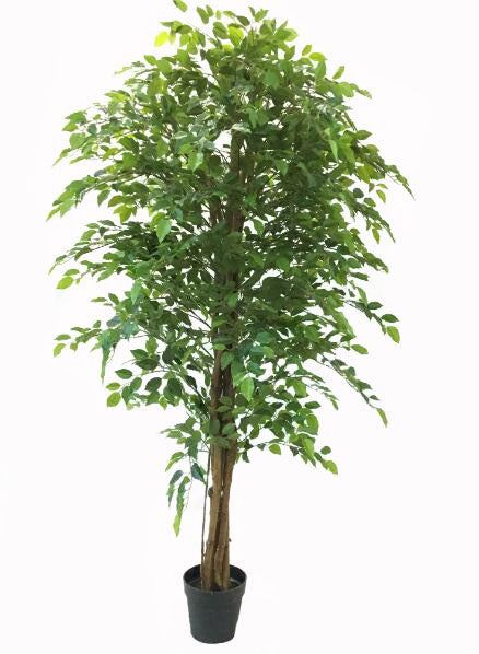 Artificial Bushy Ficus Tree 180cm
