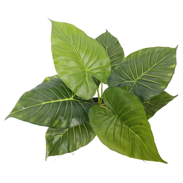Artificial Potted Taro Plant / Elephant Ear 55cm
