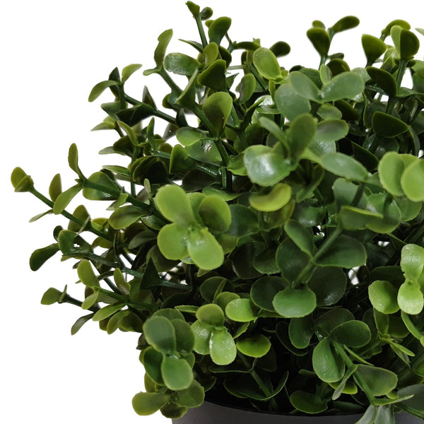 Small Potted Artificial Buxus Plant UV Resistant 20cm