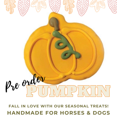 FALL - Pumpkin (pack of two)