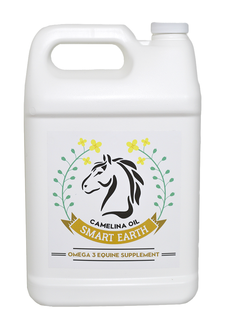 Camelina oil - 3.78L (with pump)