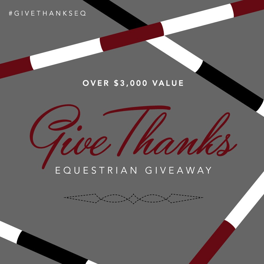 Give thanks giveaway prize - Dogwoodbling horse dog treat