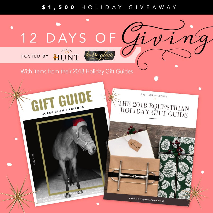 12 days of giving prize - Dogwoodbling horse dog treat