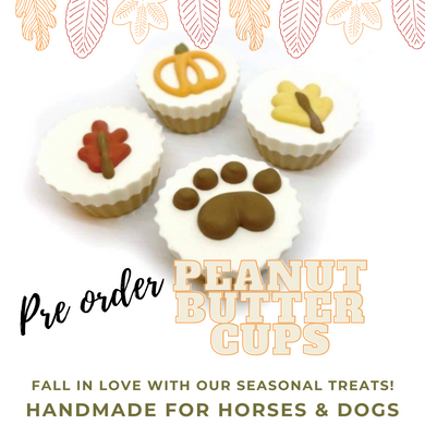 Fall Peanut Cups