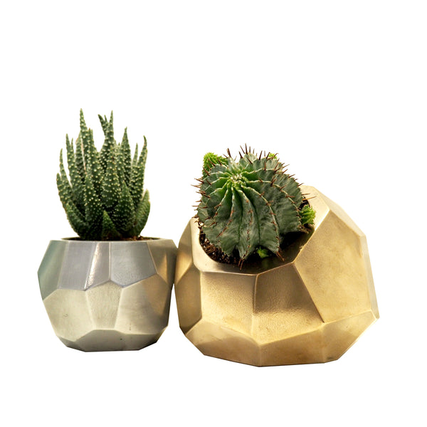 Shard Duo Geometric Planters