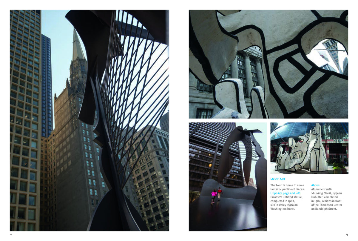 Chicago Photo Guide Book