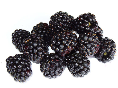 BLACKBERRY (NATURAL)