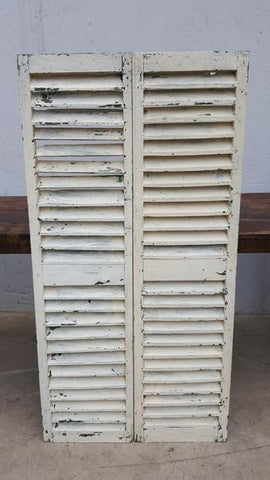 Pair of White Shutters