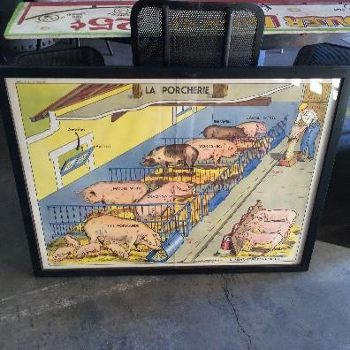 Framed French Pig Poster